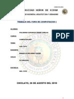 TRABAJO DEL FORO DE COMPUTACION I.docx