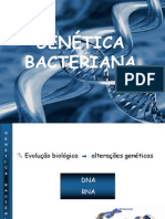 4 Aula - genética bacteriana JANA 1 h