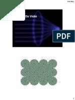 biofisica da visão_material.pdf