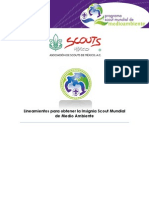 Lineamientos para Obtener la ISMMA.pdf