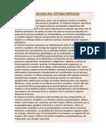 Anatomia y Fisiologia Del Sistema Nervioso Autonomo