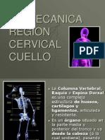 Biomecanica Del Cuell0