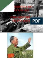 Guerrilha Do Araguaia