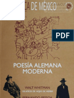 Poesia Expresion i Staale Man A