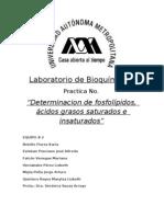 P4 Determinacion de Fosfolipidos, Acidos Grasos Saturados e Insaturados FINAL