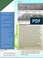 fosfolipidos bioquimica