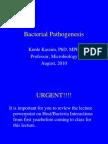 Bacterial+Pathogenesis