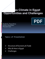Business climate in Egypt