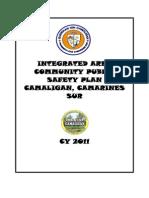 Public Safety Plan 2011