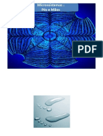 Reflexologia Pé e Mão - imagens