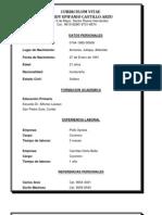 Curriculum Vitae Handy Epifanio Castillo Arzu