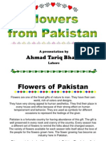 Flowers From Pakistan