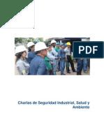 Charlas de Seguridad Industrial.docx