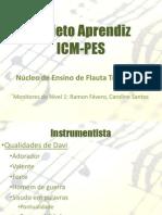 Aula1 Flautatransversal Nvel1 Projetoaprendizvv 2012 Cpia 120428162603 Phpapp02