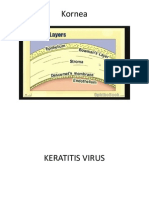 Keratitis Virus