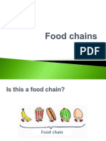 Natural Science lesson on Food chains