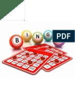 Guía para el absoluto novato en Bingo