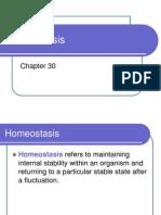 Biology - Homeostasis presentation