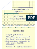 Cour Bilharzioses DCM1