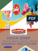 Mis Project = Vadilal Ice-cream
