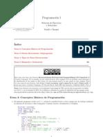 Practicas de Programacion 1 Ejercicios