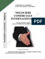 Negociere Comerciala Internationala III AI