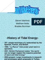 Tidal and Wave Energy