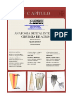 Anatomia Interna Dental Rielson