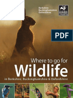 Where to go for Wildlife