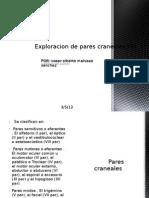 Exploracion de Pares Craneales I-VI