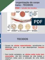 487_arquivo (1).pdf
