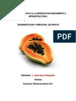 Deshidratacion de Papaya