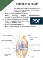 Anatomi Articulatio Genus