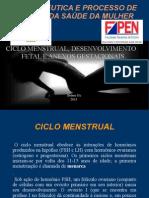 3.Ciclo Menstrual, Desenvolvimento Fetal e Anexos Gestacionais.