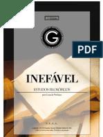 inefavel_edicao1.pdf