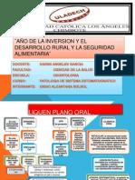 Mapa - Liquen Plano Oral (1)