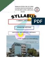Guia Silabus Organizacion y Metodos 1