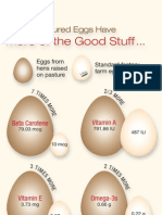 Egg Graphic