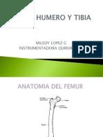 Femur, Humero y Tibia