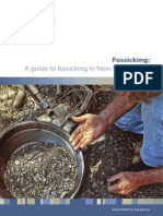 A Guide to Fossicking in New South Wales 2