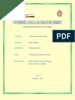 INVESTIGACION FORMATIVA II UNIDAD.pdf