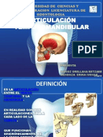 Articulación temporomandibular george
