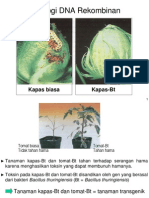 Kuliah 7 Teknologi DNA Rekombinan.pdf
