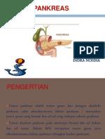 Tumor Pankreas