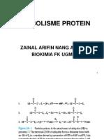 Katabolisme Protein