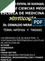 Histologia de HipÓfisis y Tyroides