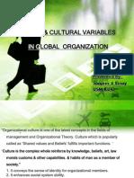 humanculturalvariables-120312114154-phpapp01
