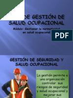 Plan de Gestion de Salud Ocupacional