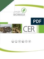 Libro Biomasa
