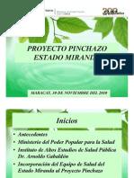 Proyecto Pinchazo Edo. Miranda